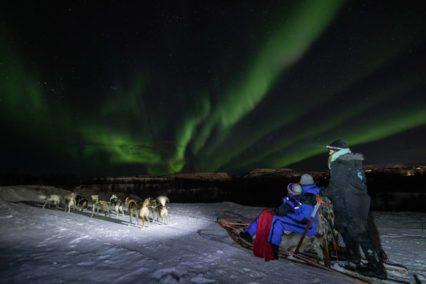 Kirkenes Husky Northern Lights Tiara Tours