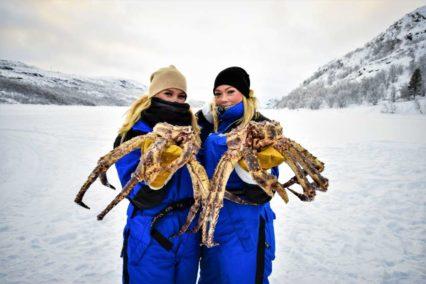 Kirkenes King Crab 1 Tiara Tours