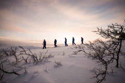Kirkenes Snowshoe 1 Tiara Tours