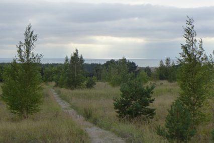 baltische-staten-uitzicht-tiara-tours